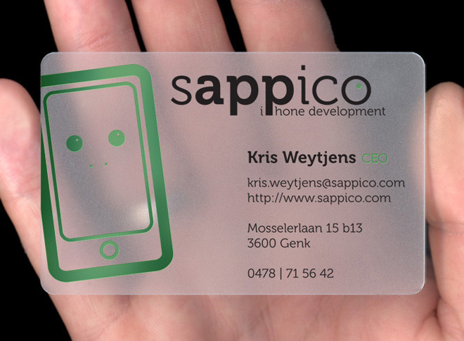 Software Engineer Web & Mobile Developer Business Card