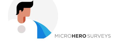 microhero logo