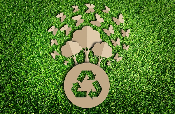 green business 1