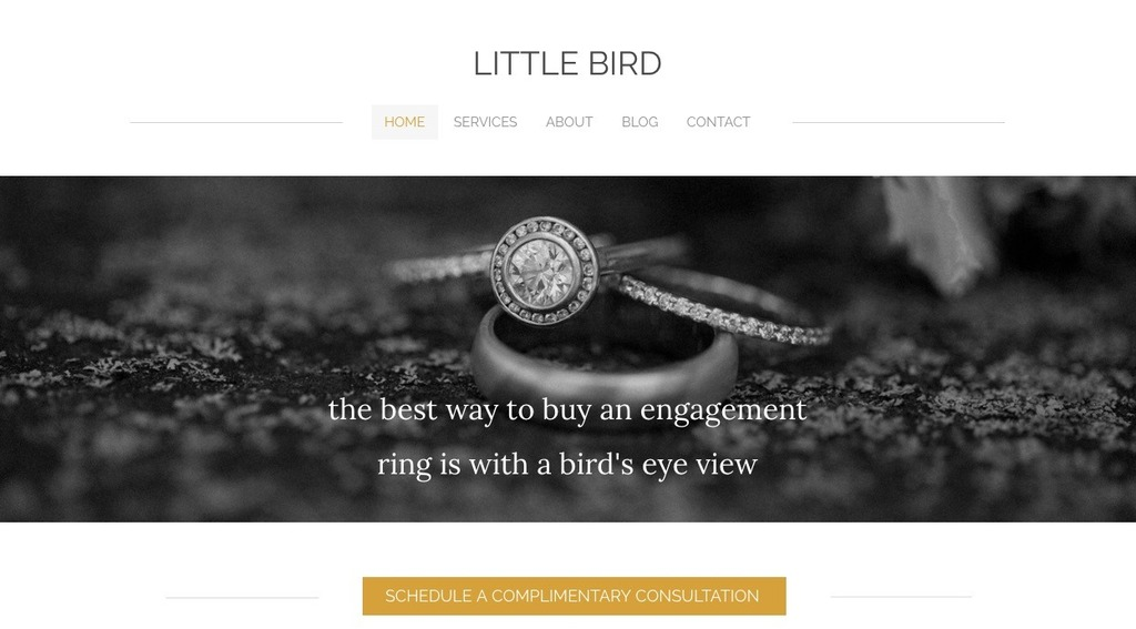 little bird main image