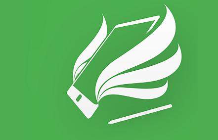 henesiz logo