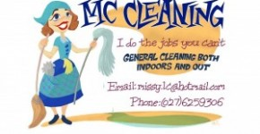 Residential & House Cleaning Business Flyer Examples & Samples ...