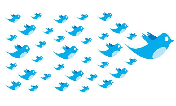 more-twitter-followers