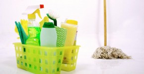 cleaning business ideas