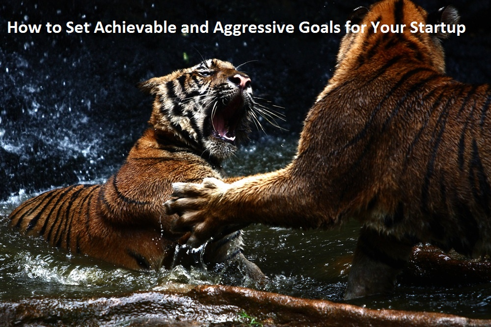 business goals and objectives